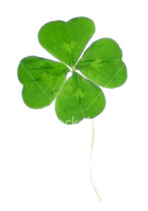 Recruiting and retaining the best employees shouldn't be a matter of luck